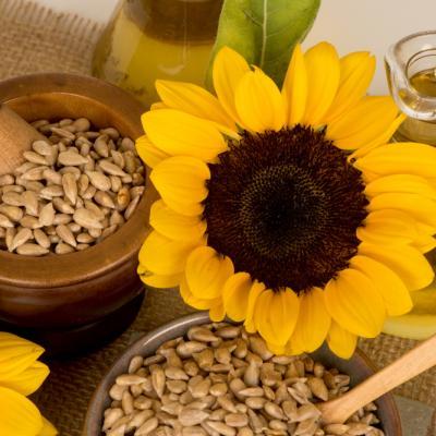 Manfaat Biji Bunga Matahari bagi Kecantikan Kulit yang Perlu Kamu Tahu