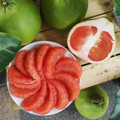 4 Manfaat Pink Pomelo untuk Kulitmu yang Cantik dan Sehat